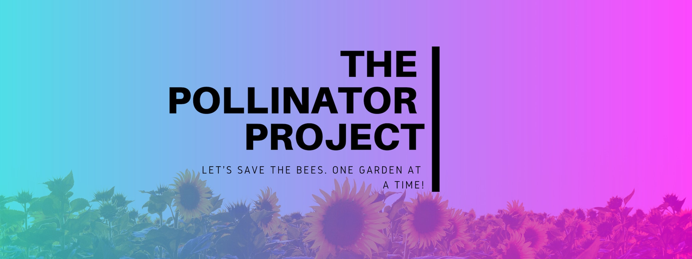 The Pollinator Project Banner